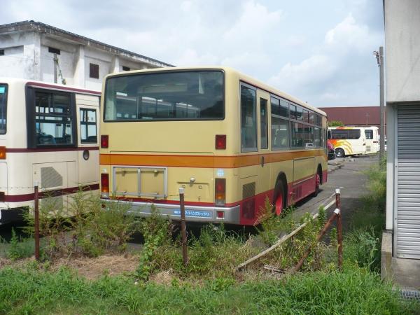 P1030863.jpg