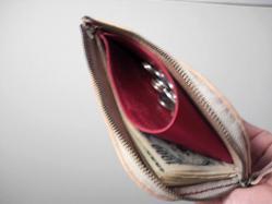Hiro purse