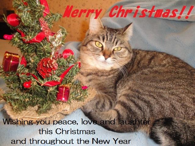 Merry Christmas!! 2