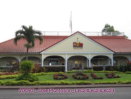 2009年1月 Dole Plantation