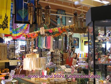 2009年1月 Aloha General Store