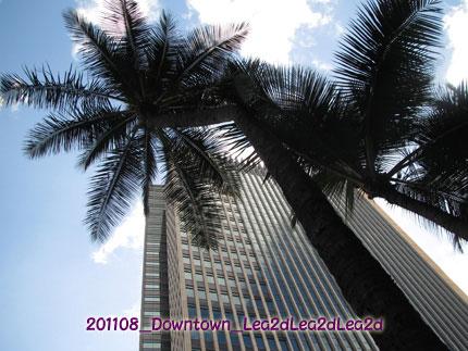 2011年8月 Downtown