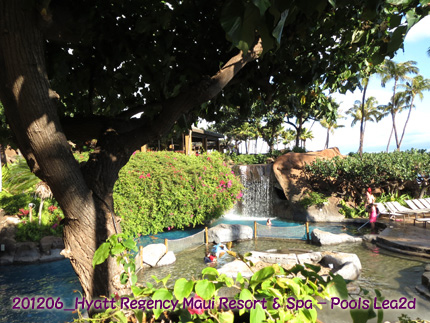 2012年6月 Hyatt Regency Maui Resort & Spa Pool