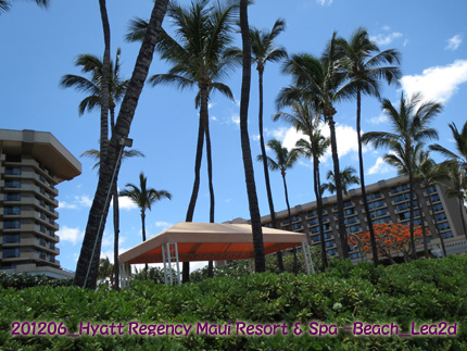 2012年6月 Hyatt Regency Maui Resort & Spa Beach