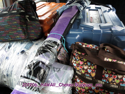 2012年6月 Cheked Baggage(PADDLE COVER & BOARD CASE)