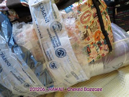 2012年6月 Cheked Baggage(PADDLE COVER & BOARD CASE)