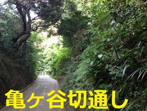 鎌倉散歩2