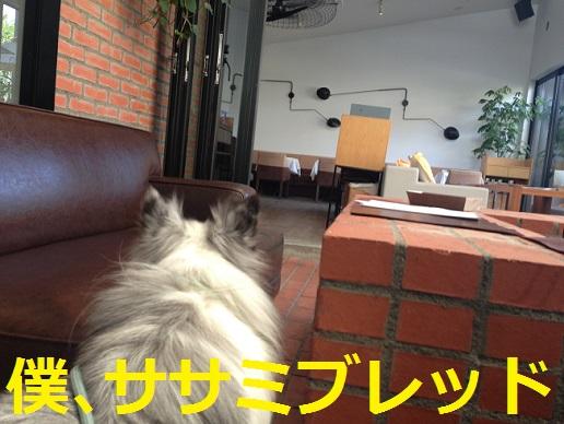 mercer cafe5