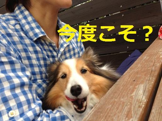 江ノ島駅パン屋さん1