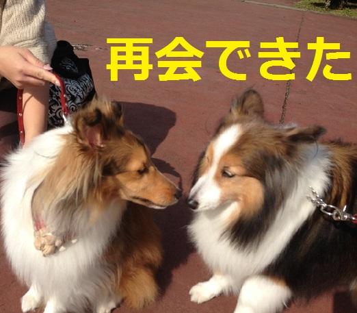 カノンちゃん2