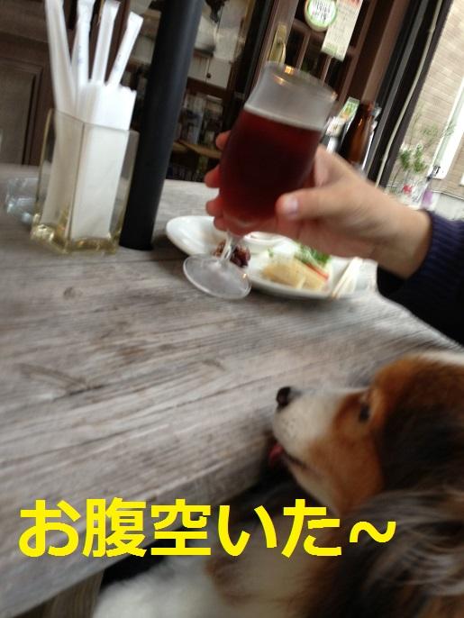 鎌倉ビール2
