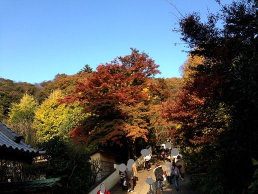 円覚寺900
