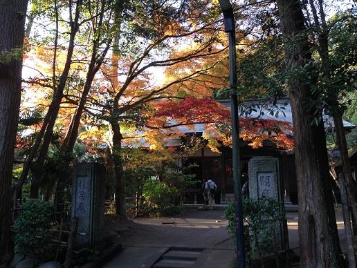 円覚寺21