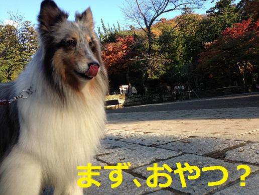 円覚寺5おやつ