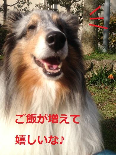 IMG_3888.jpg