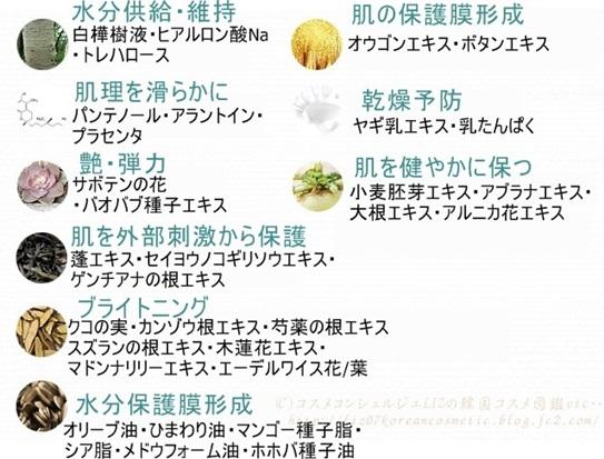 【ミズオン】コレクトエッセンシャル