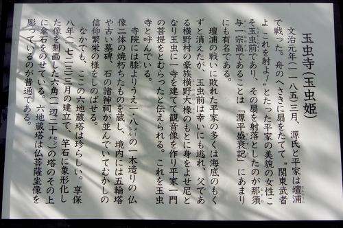 240811 玉虫寺跡4