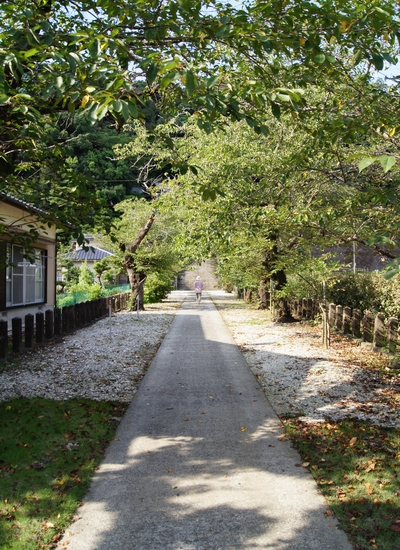 240816 姫浦神社2