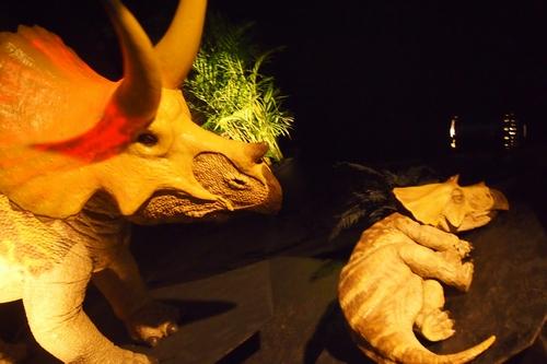 240902 恐竜展6