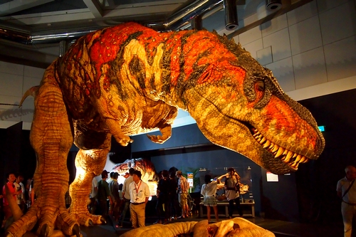 240902 恐竜展14