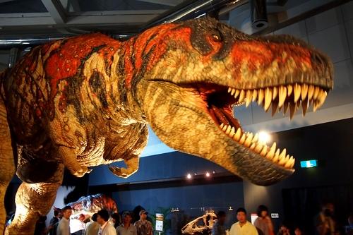 240902 恐竜展15