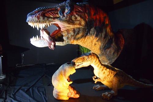 240902 恐竜展13