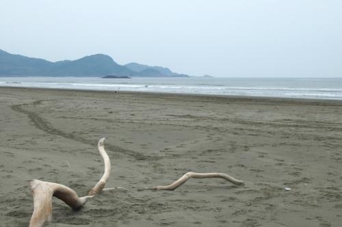 0922 お倉ヶ浜8