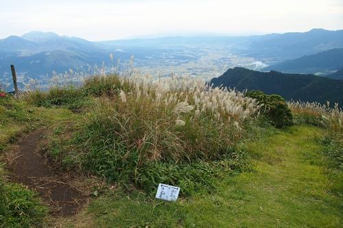241006 俵山②10