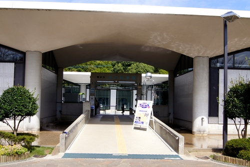 241008 八景水谷公園3