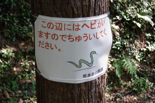 241008 八景水谷公園18