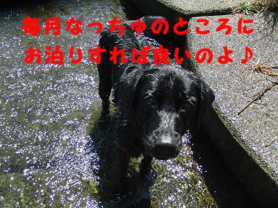 夏休み2-2