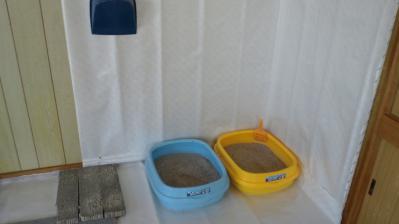 トイレ掃除