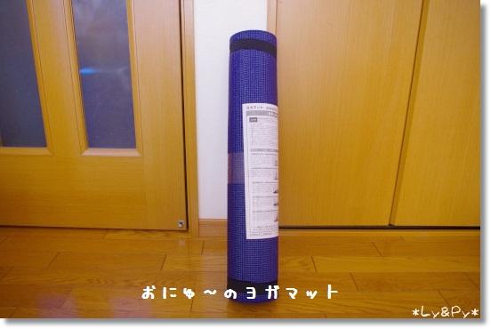 IMGP7529[1]