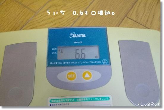 IMGP1213[1]