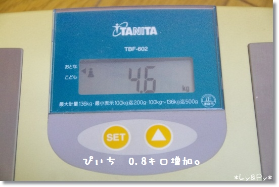 IMGP1214[1]