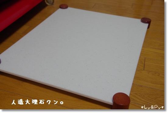 IMGP6123[1]