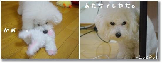 3_20121225011410.jpg