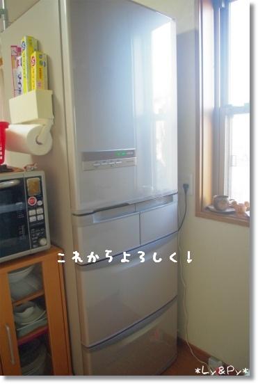 IMGP8374.jpg