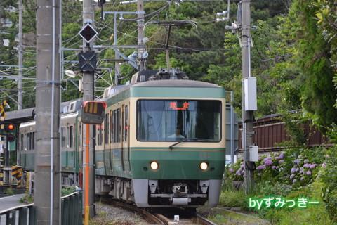 502F 紫陽花