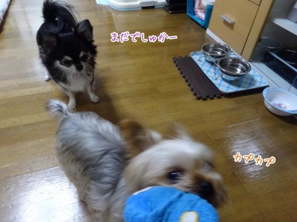 20141121231356c7b.jpg