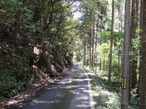国道310②