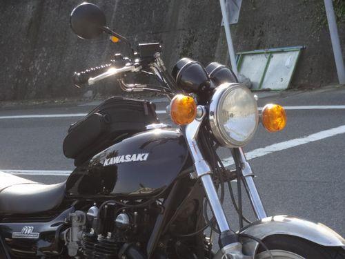 DSC00503.jpg