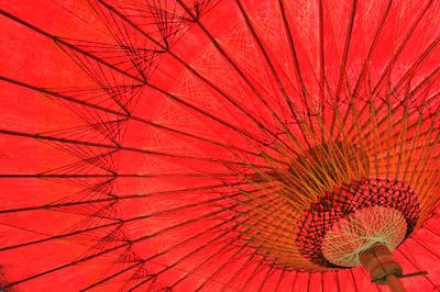 DSC_1656-Umbrella#2