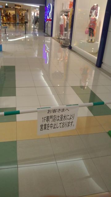 P1000054_convert_20120815044007.jpg