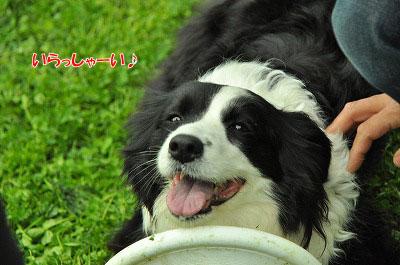 20120504-wan05.jpg