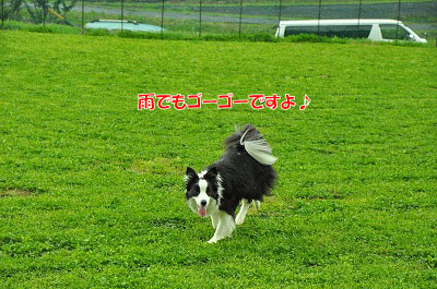 20120504-wan07.jpg