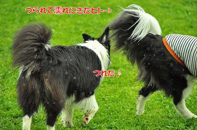 20120504-wan08.jpg