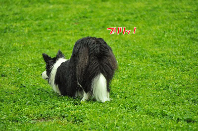 20120504-wan09.jpg