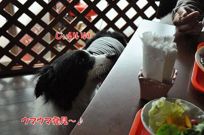 20120504-wan16.jpg