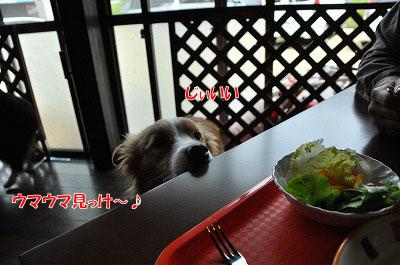 20120504-wan17.jpg